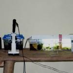 Labor zur Amphibienzucht