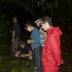 Nachttour mit dem Redfrogteam durch den 100 Hektar grossen geschuetzten Regenwald