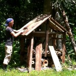 Das Dach zum Schutz