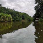 Tortugero Kanal